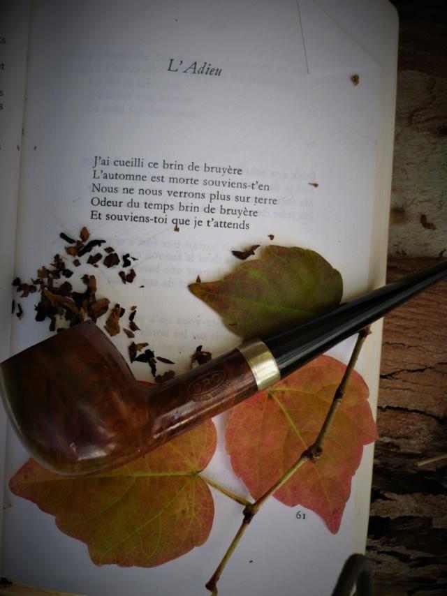 27/11, Saint Séverin 'ment un bon tabac que tu fumes là !  P1070417