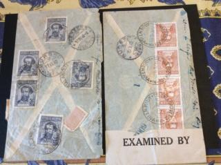 Gurbrü Be 246 EW Image106