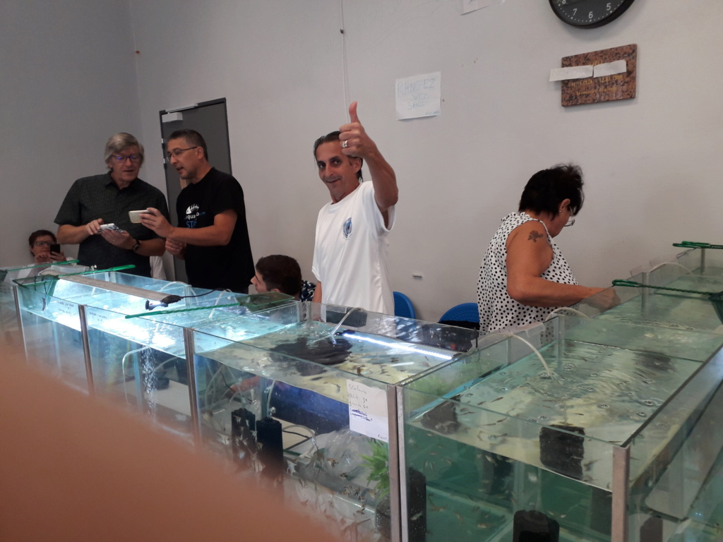 Bourse aux poissons MARSEILLE 20190910