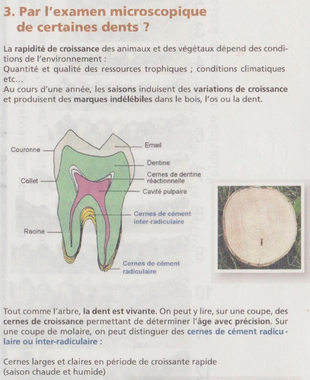 DETERMINATION DE L'AGE DES CHEVREUILS Ag_cer10