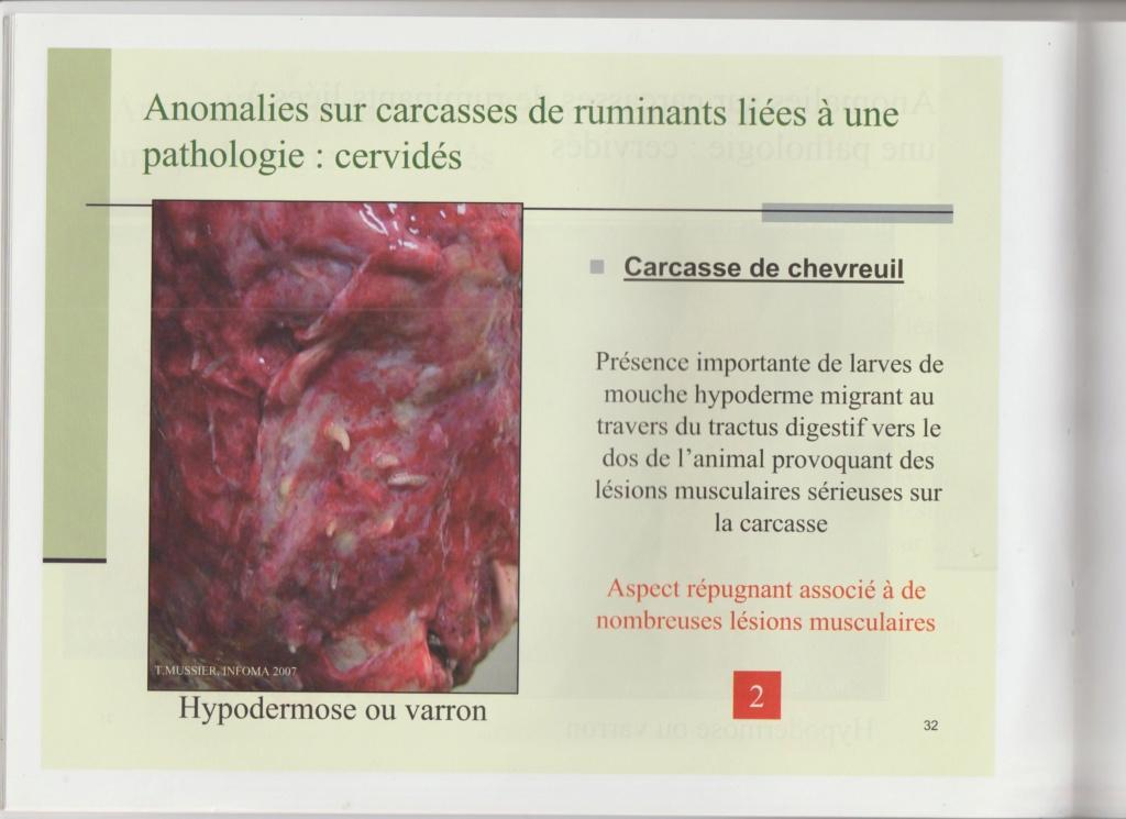 Dossier Hygiène et traitement de la venaison Hy03110
