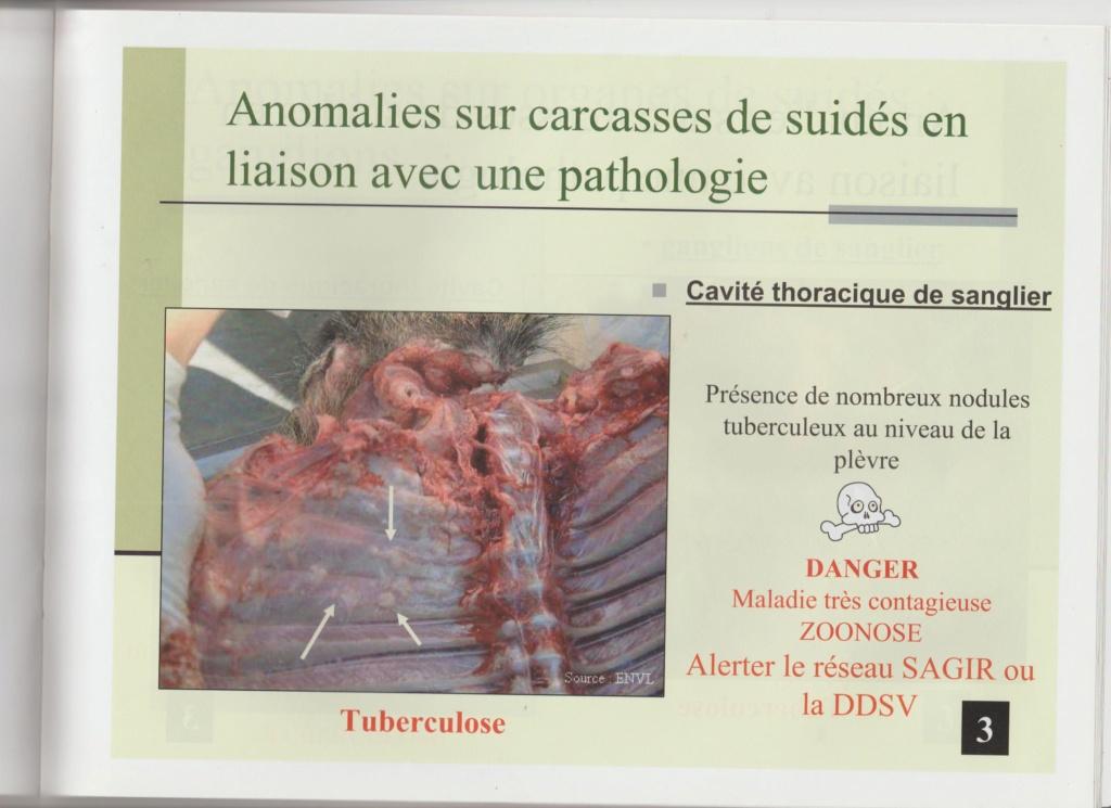 Dossier Hygiène et traitement de la venaison Hy04510