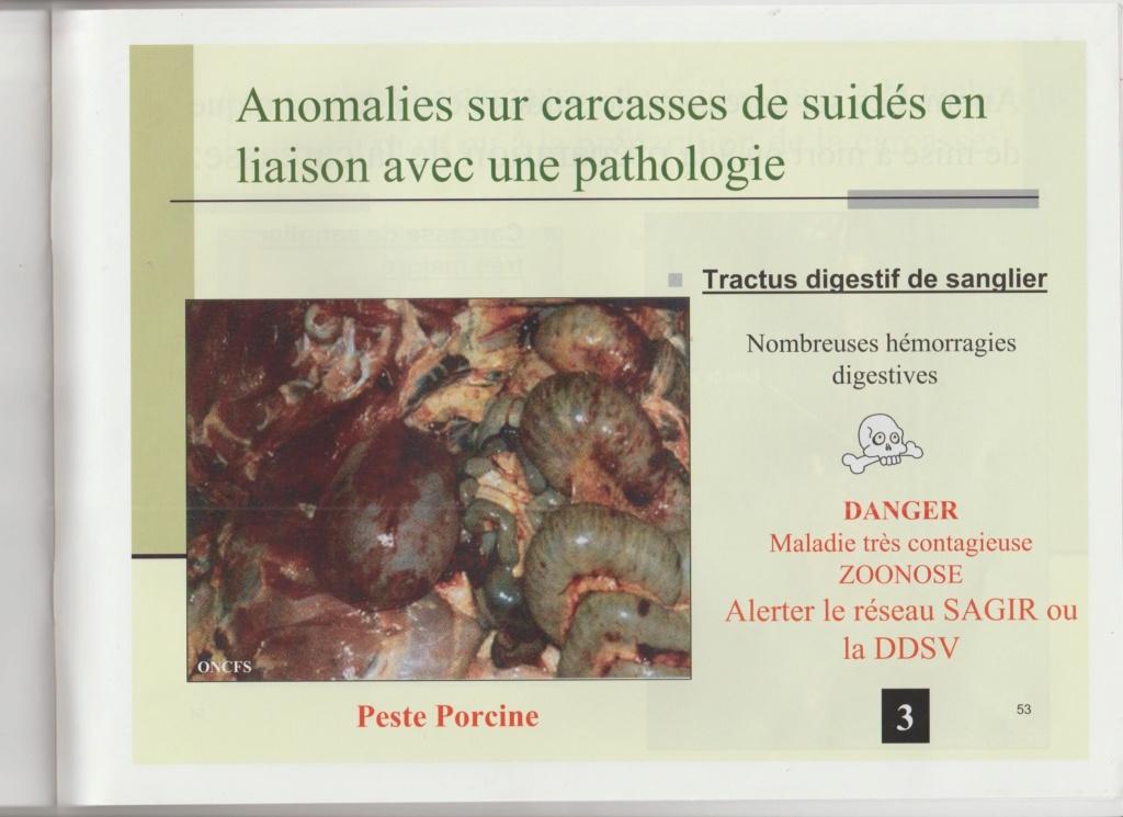 Dossier Hygiène et traitement de la venaison Hy05510