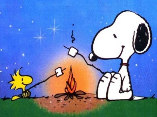 Mission de DIdine (transmise par Chatbleu) Snoopy10