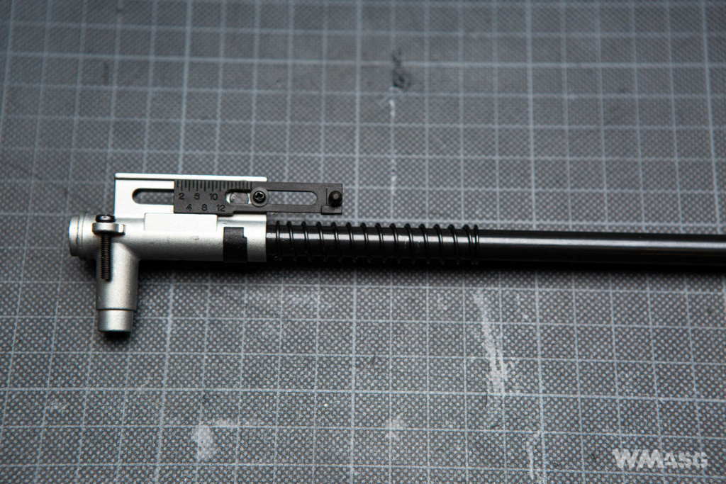 ARCTURUS - AT-AK 12 - AEG - Review Terminée! Img-9813