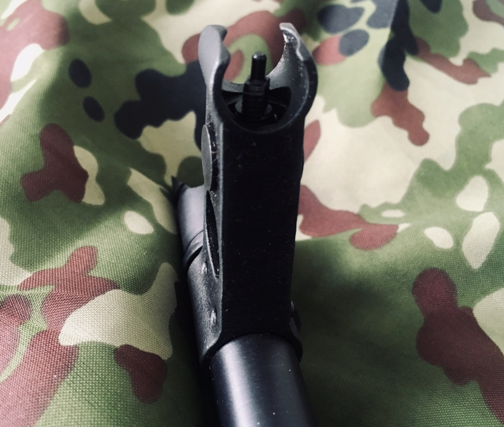 G&G ARMAMENT (GuayGuay) - AKM - AEG Img_e341