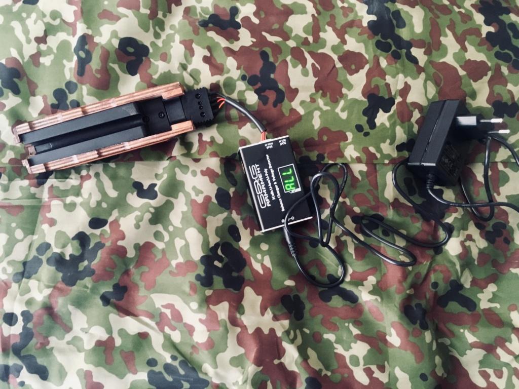 G&G ARMAMENT (GuayGuay) - AKM - AEG Img_e343