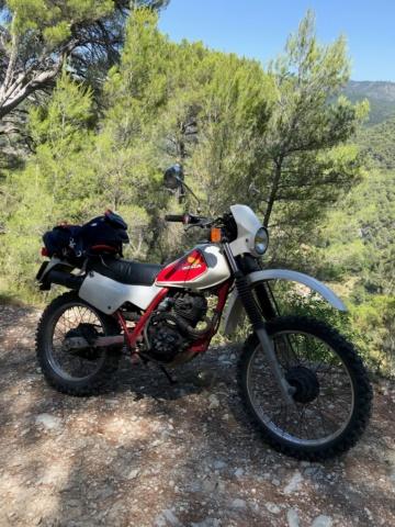 Salut (Honda XL 125R 83') Xlr13