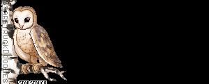 Flashlight [Ardentpaw] Oie_w010