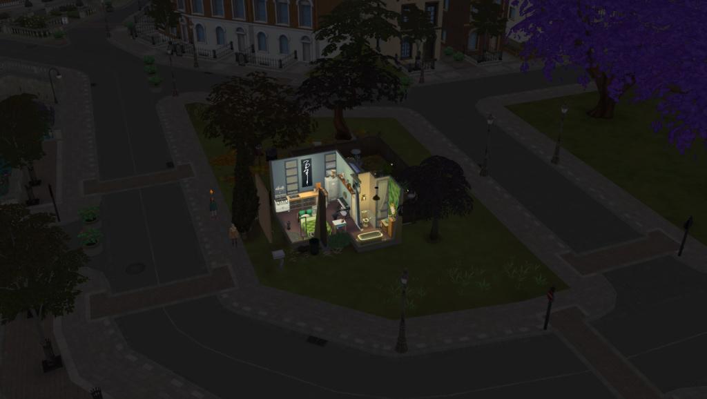 Street lights not working 03-09-11