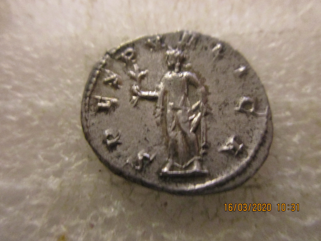 Herennius Etruscus Img_0212