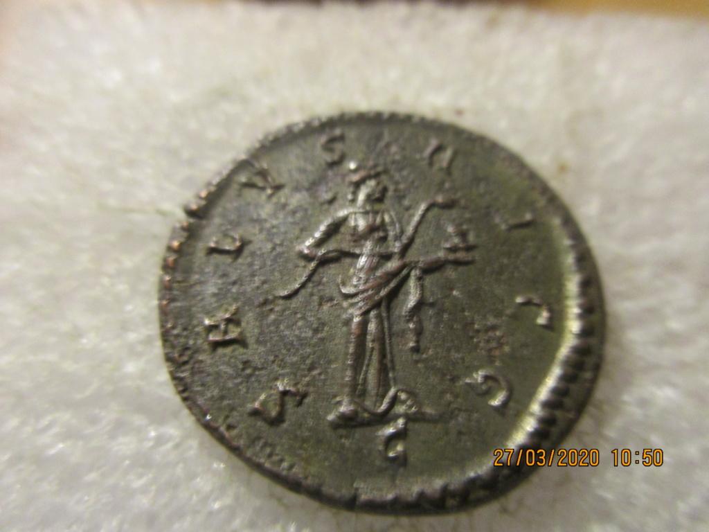 Maximianus Hercule Img_0356