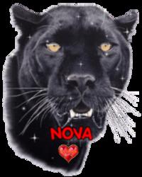 créer un forum : nova 2 le coeur de margot Logo_n10