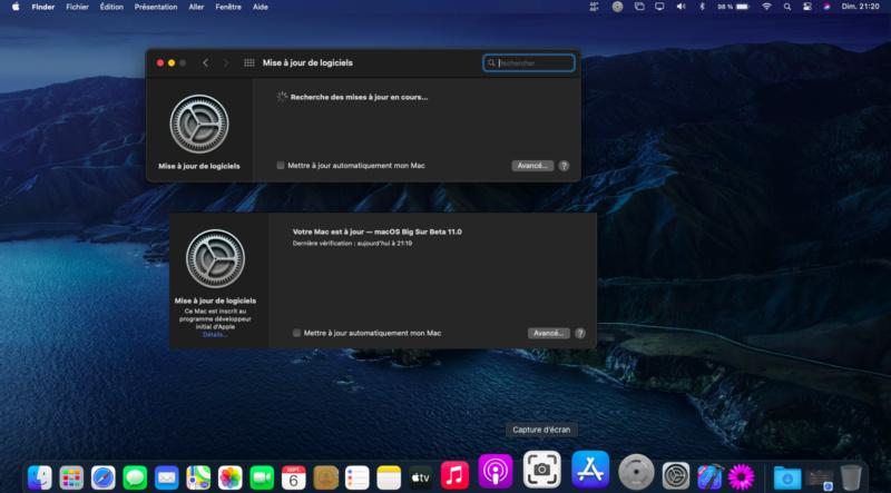 macOS Big Sur 11 Beta - Page 7 Captur16