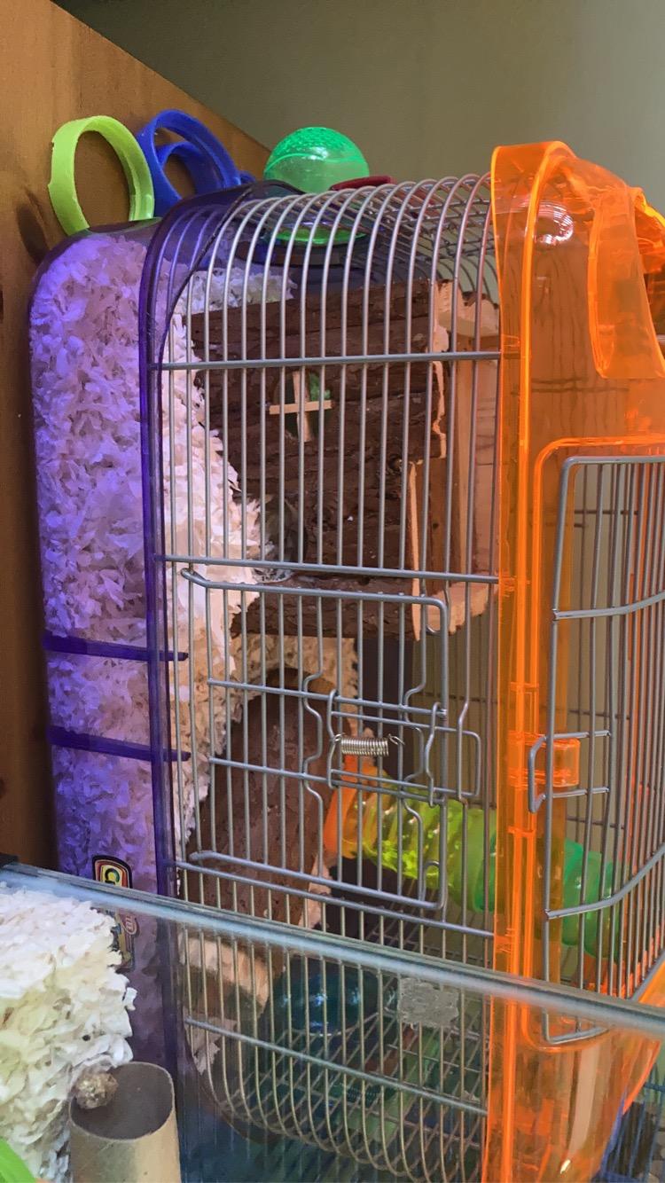 my mice cage set up.  Aa68aa10