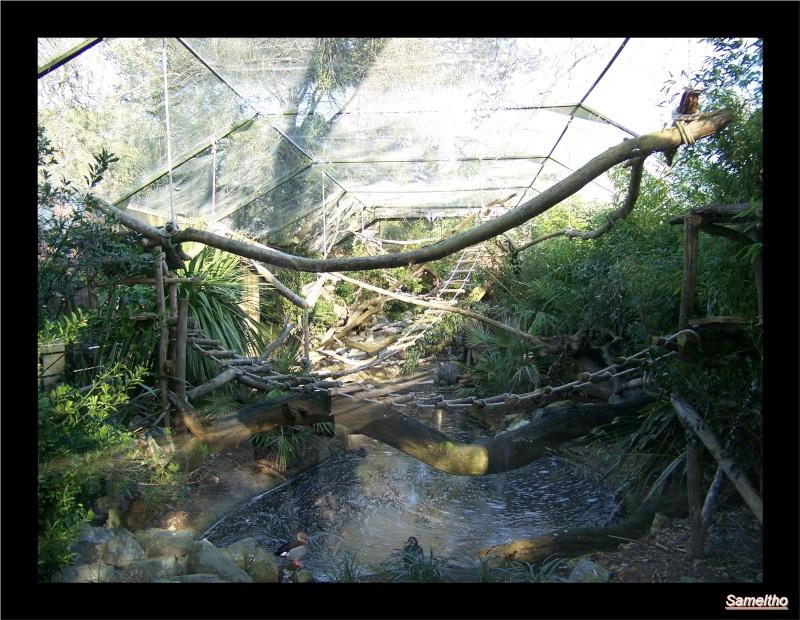 Le zoo de la fleche La_fle38