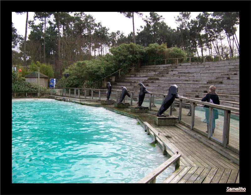Le zoo de la fleche La_fle50