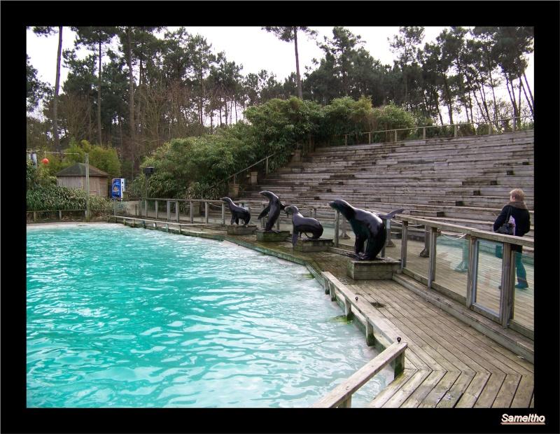 Le zoo de la fleche La_fle51