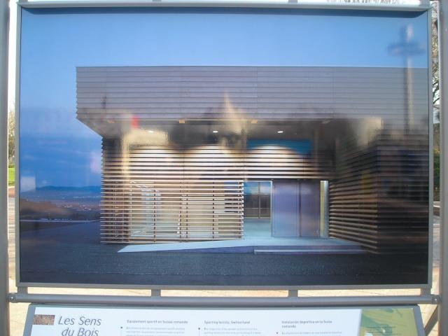 """Expo """"Les sens du bois"""" - 2008 P2113112"""