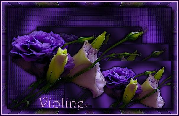 Ma ptite galerie, Violine Creach68