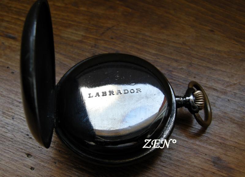 Un nom de chien pour une marque d'Omega ... Labrad12