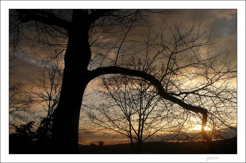 coucher de soleil - Page 2 22020816