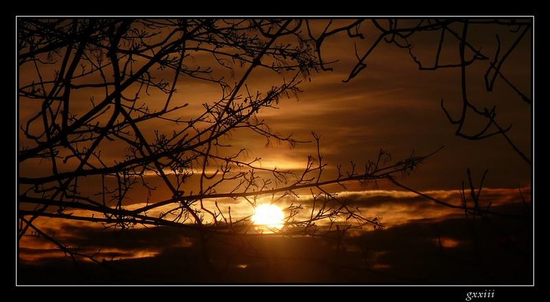 coucher de soleil - Page 2 22020819