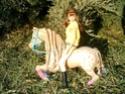 [BARBIE] Une partie de mes Barbies p1 et surtout mes CHEVAUX ! Cheval18