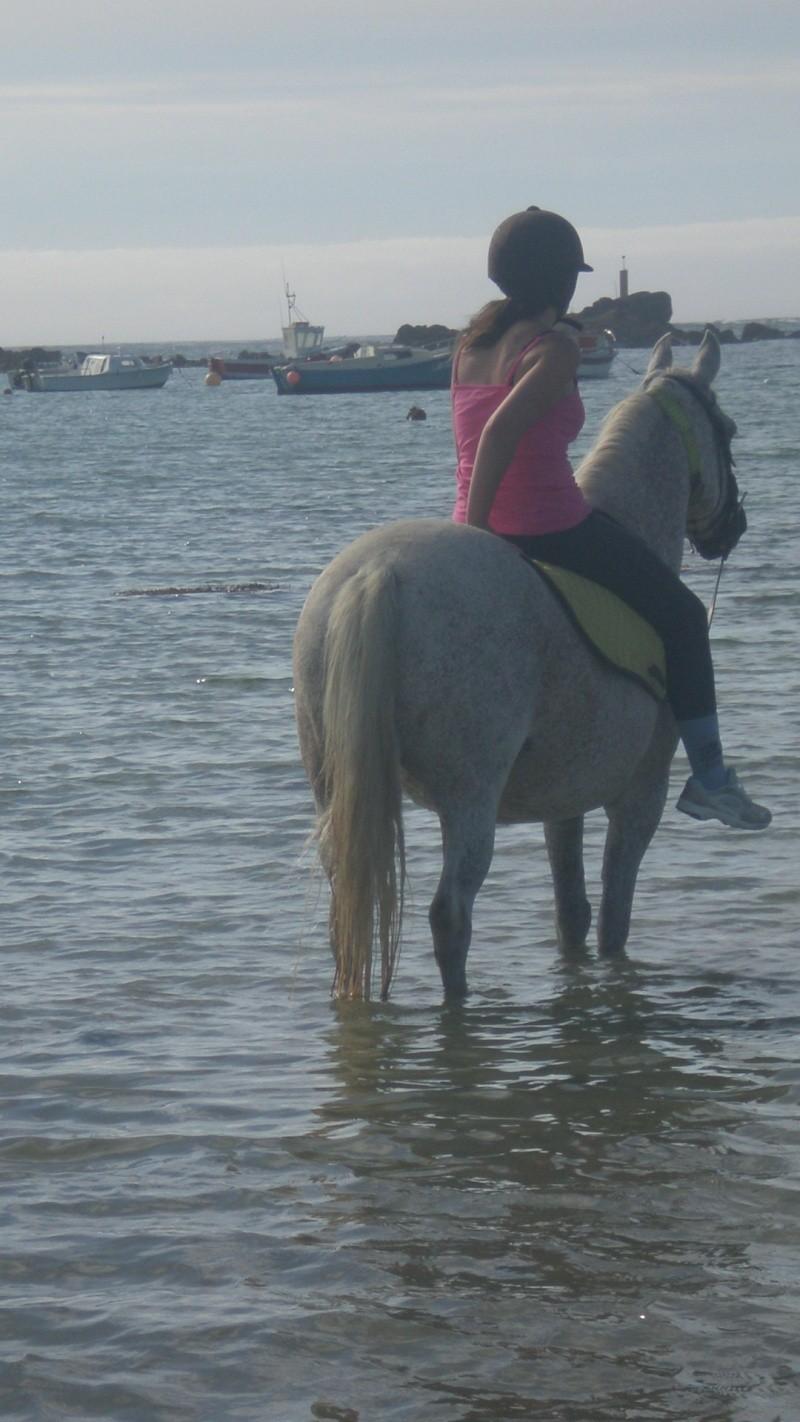 Concours photo : Le cheval et l'eau  P7080510