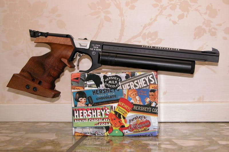 Choix pistolet Steyrl10
