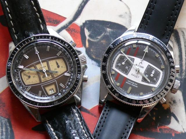 Feu de vos montres de pilote automobile P1010410