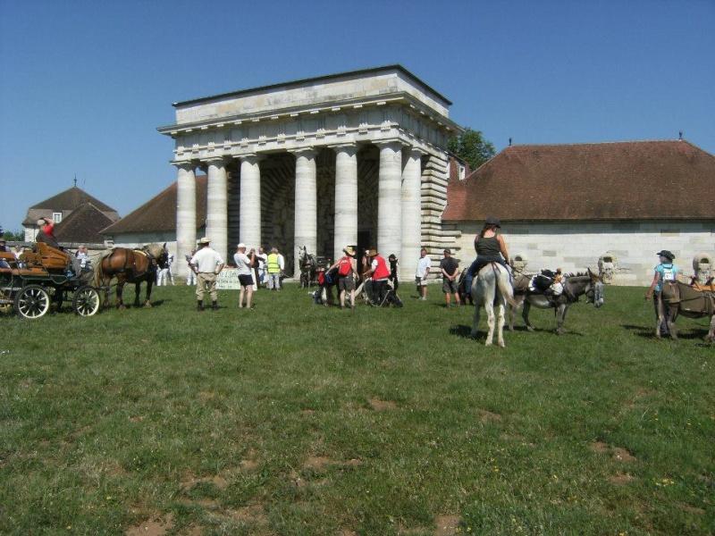 Foire de l'âne et de la mule 10016810
