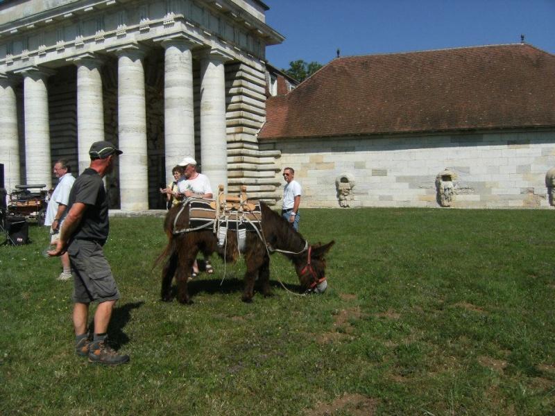Foire de l'âne et de la mule 56177510