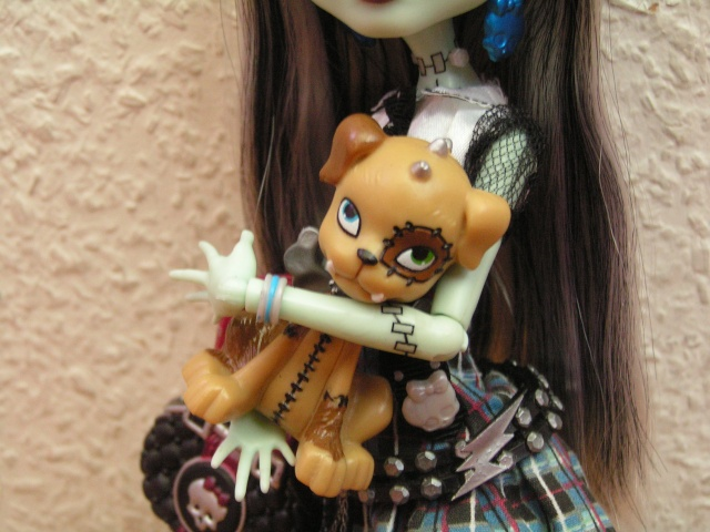 Mes Monster High Franki21