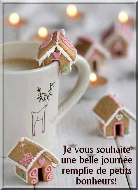 MERCREDI 12 DECEMBRE 2018 Sainte JEANNE-FRANCOISE de CHANTAL  Bonne-11
