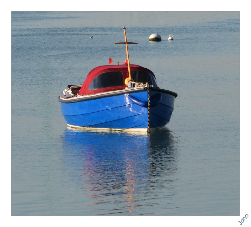 just a little boat Img_1311