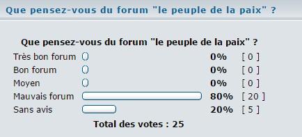 """Forum """"Le Peuple de la paix"""" Sondag10"""