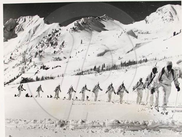 Para skiers Para_s10