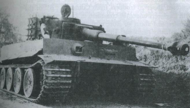 Le Tigre de Biazza Tigreb10