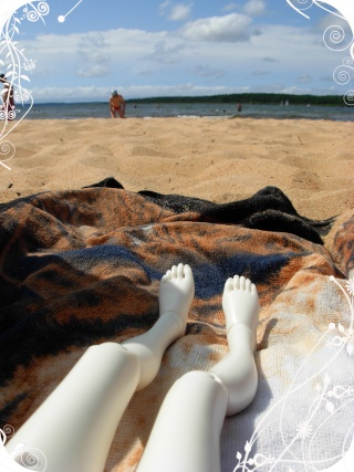La photo du mois - règles et images Aout 2010 Aout_c11