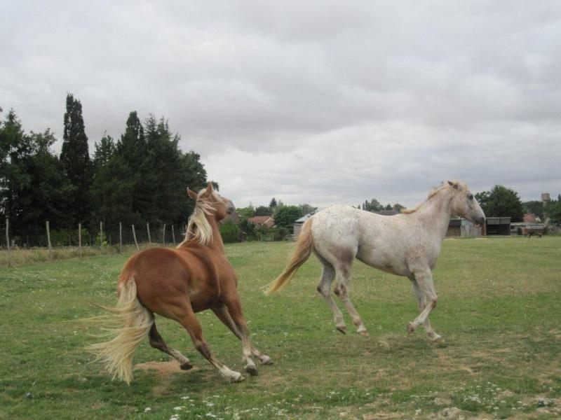 ULATH et ISAURA Rando_10