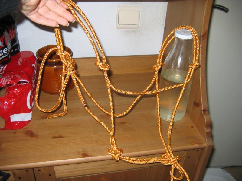 licol en corde Photos10