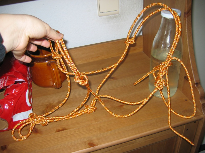 licol en corde Photos12