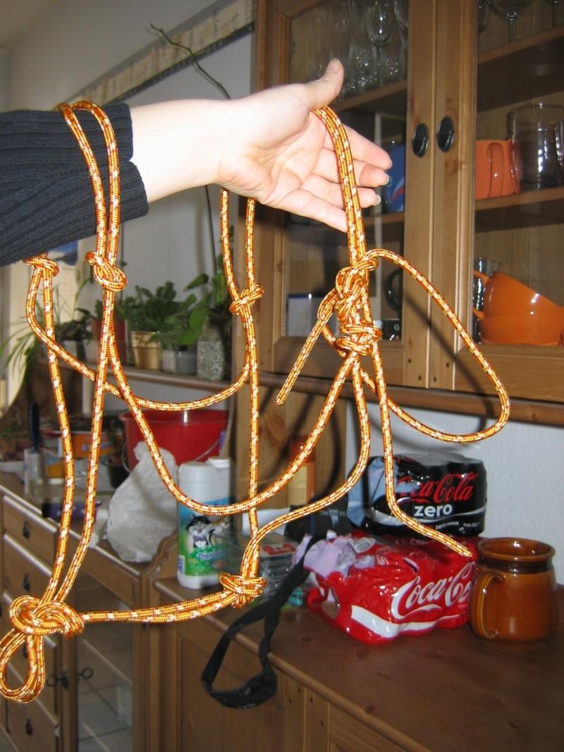 licol en corde Photos13