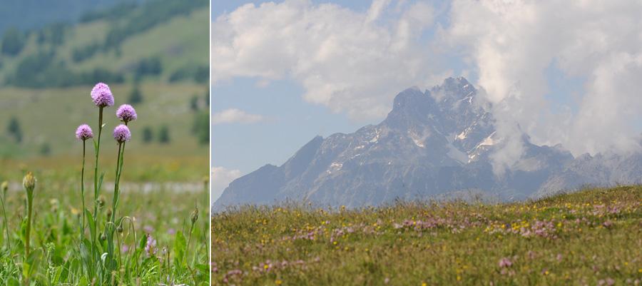 Virée dans les Alpes italiennes, du Piémont aux Dolomites Dsc_0052
