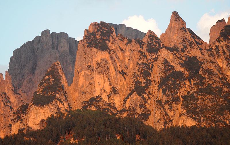 Quelques nigritelles d'Autriche et des Dolomites - Page 2 Dsc_0419