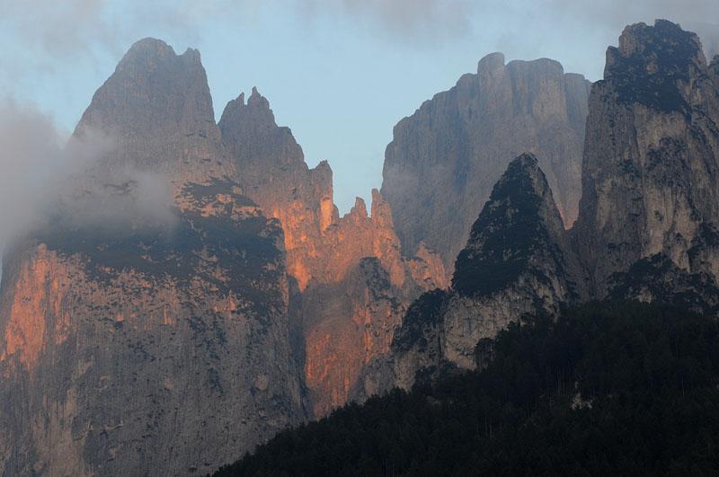 Quelques nigritelles d'Autriche et des Dolomites - Page 2 Dsc_0613