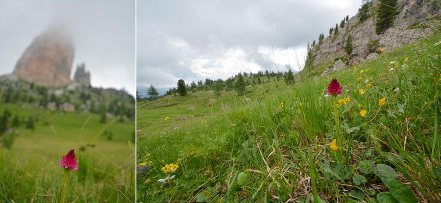 Virée dans les Alpes italiennes, du Piémont aux Dolomites Jlr_1810