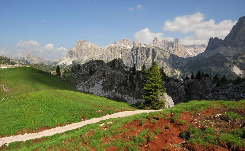 Quelques nigritelles d'Autriche et des Dolomites - Page 2 Jlr_9414