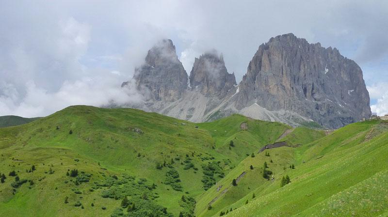 Quelques nigritelles d'Autriche et des Dolomites - Page 2 P1160111